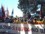 La Asamblea Ambientalista de Gualeguaychú se movilizará contra la derogación de la Ley de la Madera y la instalación de pasteras