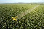 Agrotóxicos y sus consecuencias en Argentina