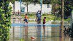 Desmonte, construcción en humedales, monocultivo: 40 millones de hectáreas inundadas