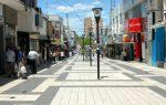 El Gobierno municipal presentó el plan para la remodelación de la Peatonal San Martín de Paraná