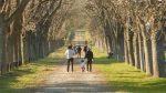 Parque Botánico Leandro N. Alem: un lugar para disfrutar, descansar y aprender