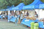 Último sábado del Mercado en tu Barrio en la plaza Mujeres Entrerrianas