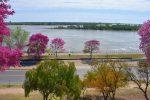 La Costanera Baja será peatonal para recreación y deportes