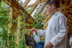 Concordia contará con la primera aula sustentable del país