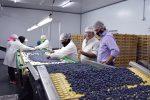 Invitan a empresas entrerrianas a promover la creación de 1000 empleos en la provincia