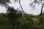 Charla virtual sobre Áreas Naturales Protegidas